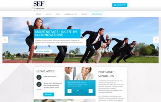 SEF Consulting